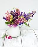Lupines в вазе Стоковые Фото
