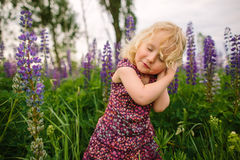 Lupines field and girl Royalty Free Stock Image