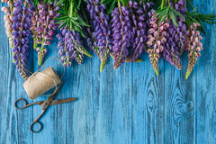 Lupines Flowers on wooden background Stock Image