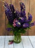 Lupines i vasen Royaltyfria Bilder