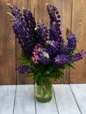 Lupines w wazie Obraz Stock