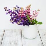 Lupines w wazie Obrazy Stock
