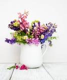Lupines w wazie Zdjęcie Royalty Free