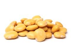 Lupini beans Stock Photo