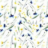 Lupini variopinti e fiordalisi di speronelle della bella molla di erbe floreale luminosa delicata tenera delicata con i germogli  illustrazione vettoriale