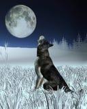 Lupo che urla alla luna piena Fotografie Stock Libere da Diritti
