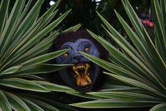 Lupo mannaro che si nasconde dietro le piante fotografia stock libera da diritti