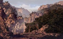 Lupo nel canyon Fotografia Stock