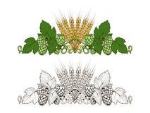 Luppolo ed illustrazione di vettore dell'ornamento dell'orzo royalty illustrazione gratis