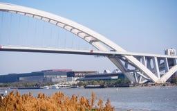 Lupu bro i solig dag, Shanghai, Kina Royaltyfria Bilder
