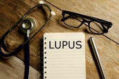 lupus fotografie stock libere da diritti
