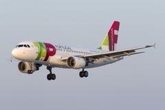 Luqa Malta 8 Juli 2015: KNACKA LÄTT PÅ landning A319 arkivfoto