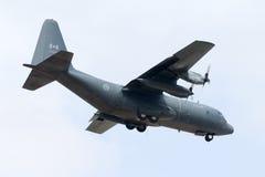 Luqa Malta - 14 Juni 2005: Kanadensare C-130 Arkivbild