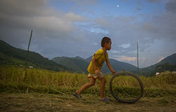Lura att spela med gamla gummihjul, medan vuxna människor arbetar på skördsäsongen Royaltyfri Fotografi
