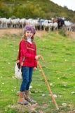 Lura flickaherdinnan som är lycklig med flocken av får och pinnen Arkivfoto