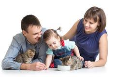 Lura flickan och henne föräldrar som matar katter kattungar Arkivbild