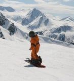 lura snowboarden Royaltyfri Foto