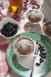 Lurar den allo yoghurten för muffin mirtilli Arkivbild