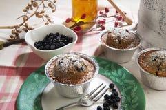 Lurar den allo yoghurten för muffin mirtilli Royaltyfri Bild