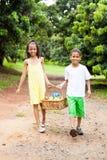 Lurar den bärande korgen av äpplen Fotografering för Bildbyråer