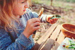 Lurar den undersökande naturen för barnflickan i tidig vårskog att lära att älska naturen Undervisande barn om att ändra för säso royaltyfri fotografi