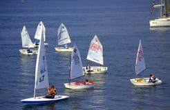 Lurar segelbåtar som seglar av Arkivfoton