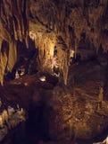 luray caverns royaltyfri bild