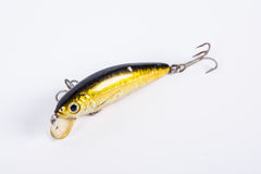 Lure fish Stock Photos
