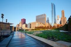 Lurie Garden bij Millenniumpark in Chicago stock foto