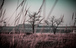 Lurking in the background - Tempelhof, Berlin. Royalty Free Stock Image
