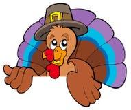 Lurking cartoon turkey in hat. Illustration Stock Photography