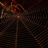 Lurking metallic spider Royalty Free Stock Image