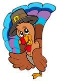 Lurking Thanksgiving turkey. Illustration Stock Photography