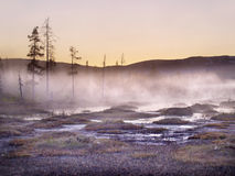 lurudalen挪威斯堪的那维亚谷 免版税库存照片