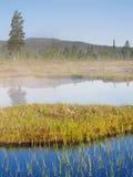 lurudalen den norway dalen Arkivfoto