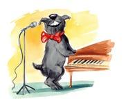 lurvigt sjunga för hund Arkivbilder