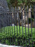 Luscious зеленый сад Стоковые Изображения