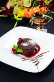 Luscious chocolate dessert. With fresh berries on a plate Stock Images