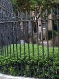 Luscious green garden Stock Images