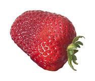 Luscious large ripe strawberry on white Royalty Free Stock Photos
