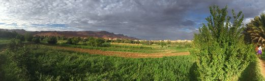 Luscious oasis in a Saharan gorge - panoramic. Contrary to belief - the Sahara is not just sand dunes - many parts of it closer to the Atlas mountains, are in stock photography