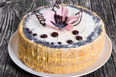 Luscious poppy seeds, walnut and raisins sponge cake. Layered with cream and  decorated with chocolate drops and icing-sugar beautiful pink flower on white dish Stock Image