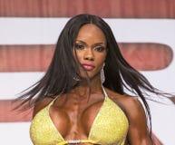 Luscious Pro Bikini Beauty. Voluptuous, luscious pro bikini competitor Eboney Royalty Free Stock Images