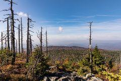 Lusen mountain Bayerischer wald nationalpark. Dried trees on the top of the mountain. View of the valley in the national Bayerisch Stock Photography