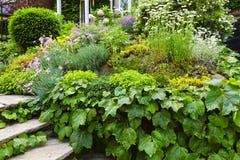 lush сада домашний стоковые фотографии rf