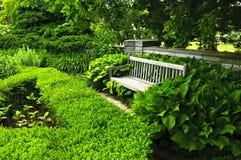 lush сада зеленый стоковые фотографии rf