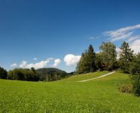 Lush Alpine meadow in summer Royalty Free Stock Photography