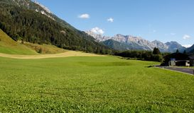 Lush alpine meadow under mountain Royalty Free Stock Image
