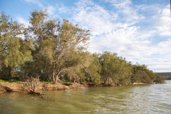 Lush Banks of the Murchison River Royalty Free Stock Photography
