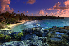 Lush beach. Gorgeous beach with lush tress and rocks Royalty Free Stock Images